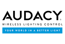 ANP Lighting  logo